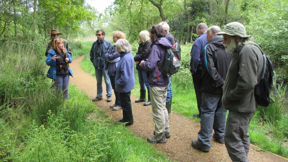 Businesses champion nature in Norfolk