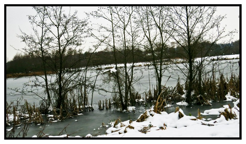 Whitlingham Broad frozen