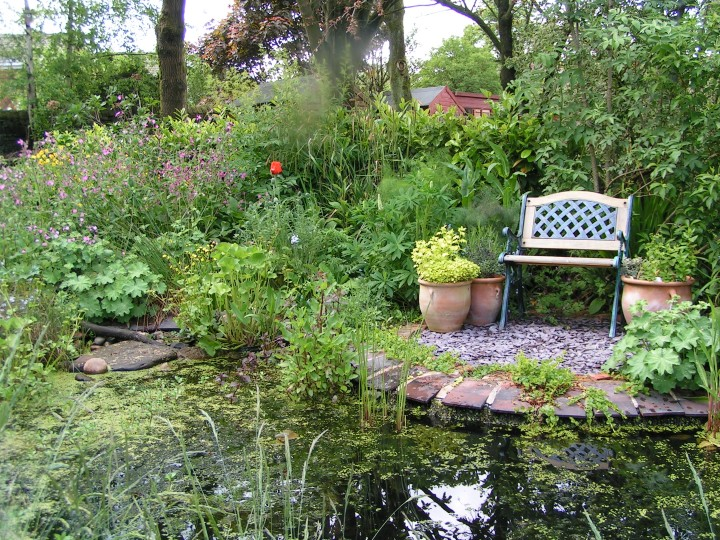 Surveying ponds norfolk wildlife trust for Garden pond management