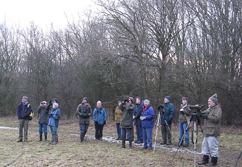 2018-01-21 Hoe Bird Walk, Hoe Common