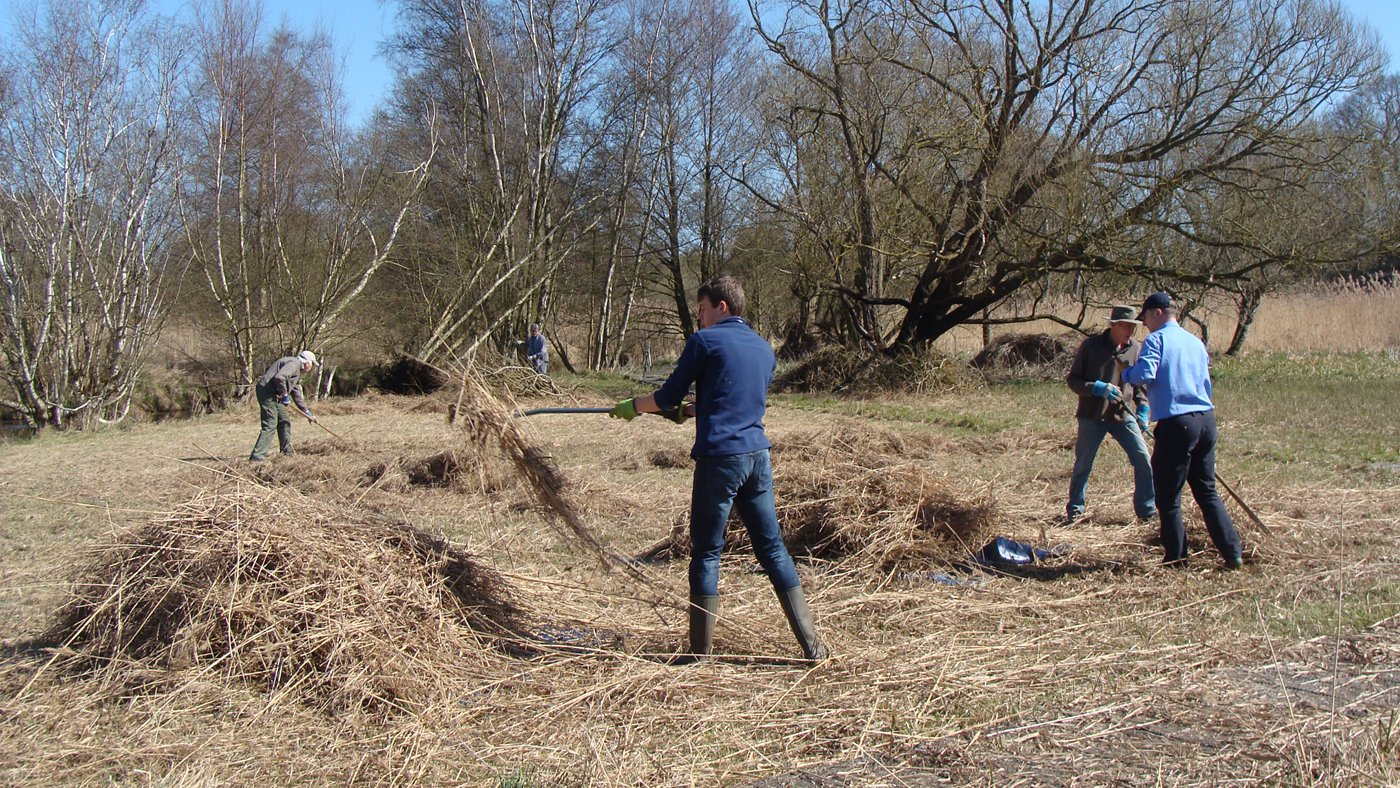 Volunteering at South Walsham Fen by Tony McKie