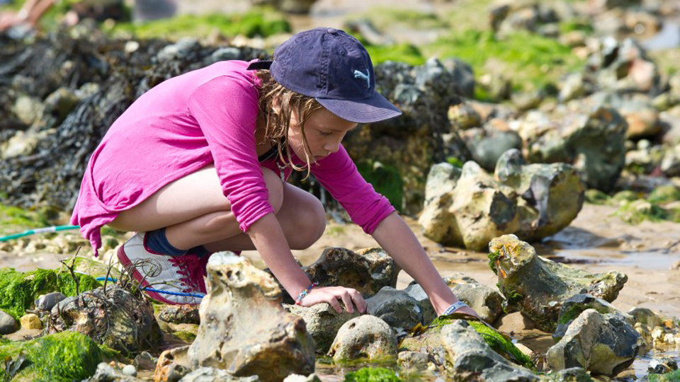 2018-04-03 Rockpool Rummaging at West Run