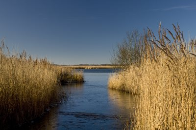 NWT Hickling Broad, by Richard Osbourne
