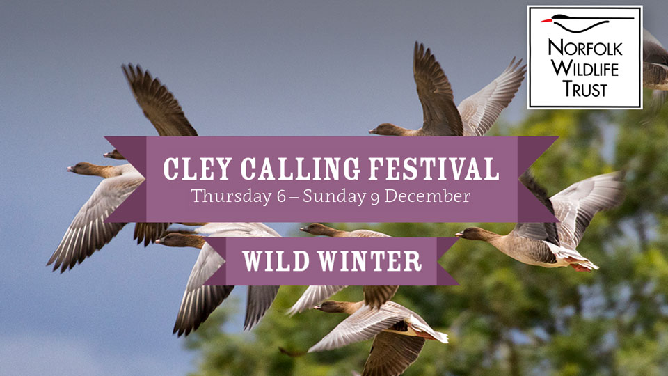Cley Calling Wild Winter festival