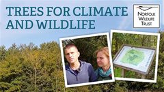 Trees for climate and wildlife