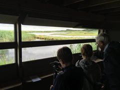2019-12-05 Cley Calling - Capturing Cley,