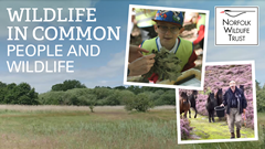 Wildlife in Common: people and wildlife