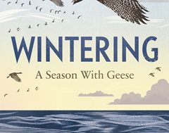 2020-10-29 Wintering - A Season with Gees