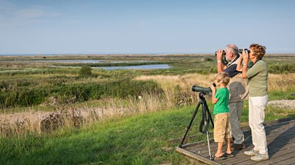 Discover Norfolk's wildlife
