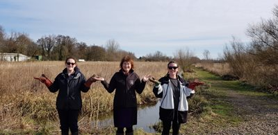 Pamela Abbott with volunteers at NWT Thorpe Marshes