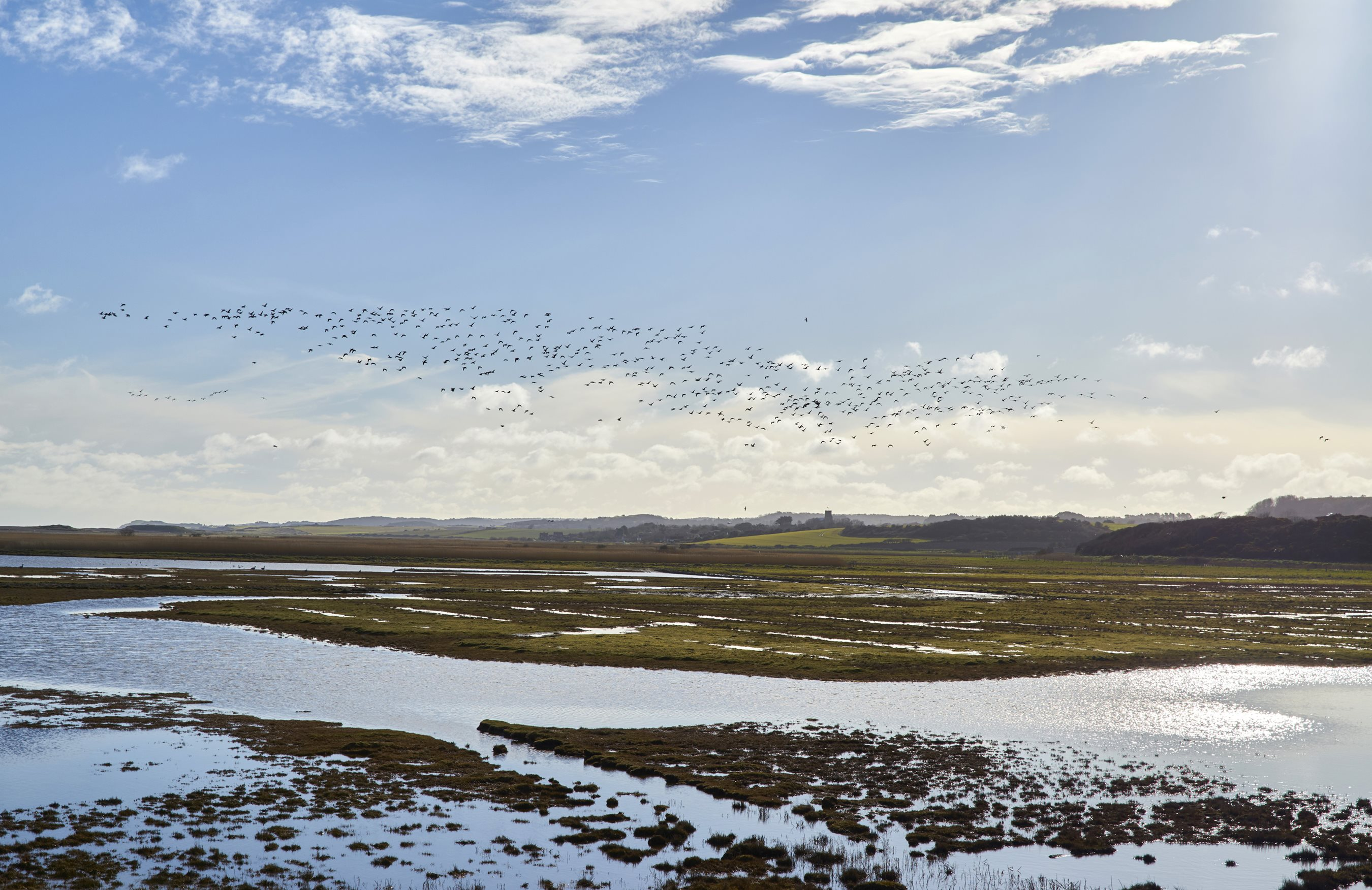 Brew with a View, NWT Cley Marshes NR25 7SA | Take a social wander around the reserve with a focus on enjoying the outdoors with both friends and strangers. | Walking, social, wildlife, hot drinks