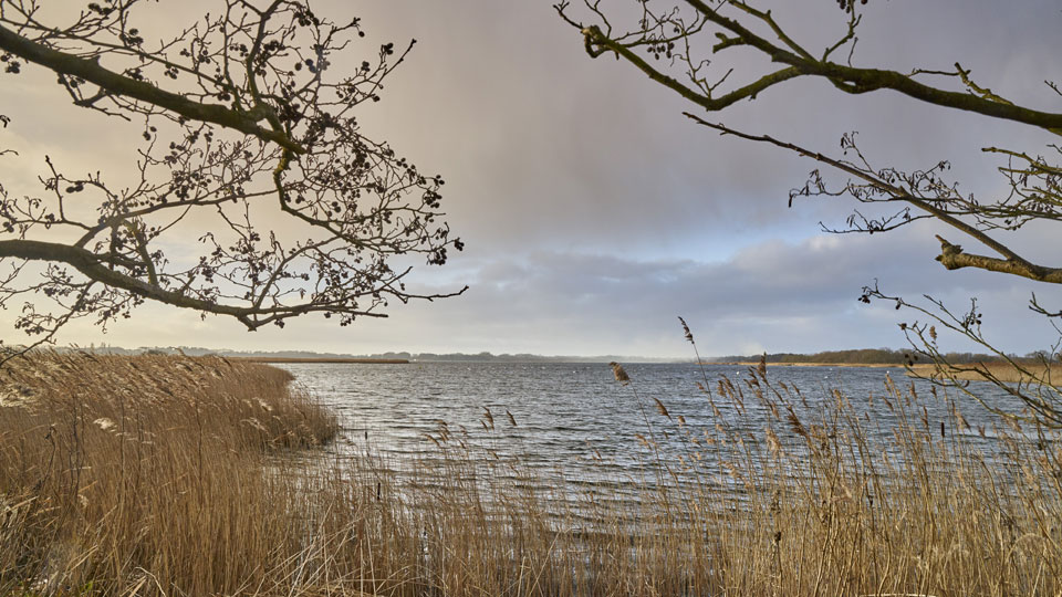 The Hickling Broad Nature Reserve