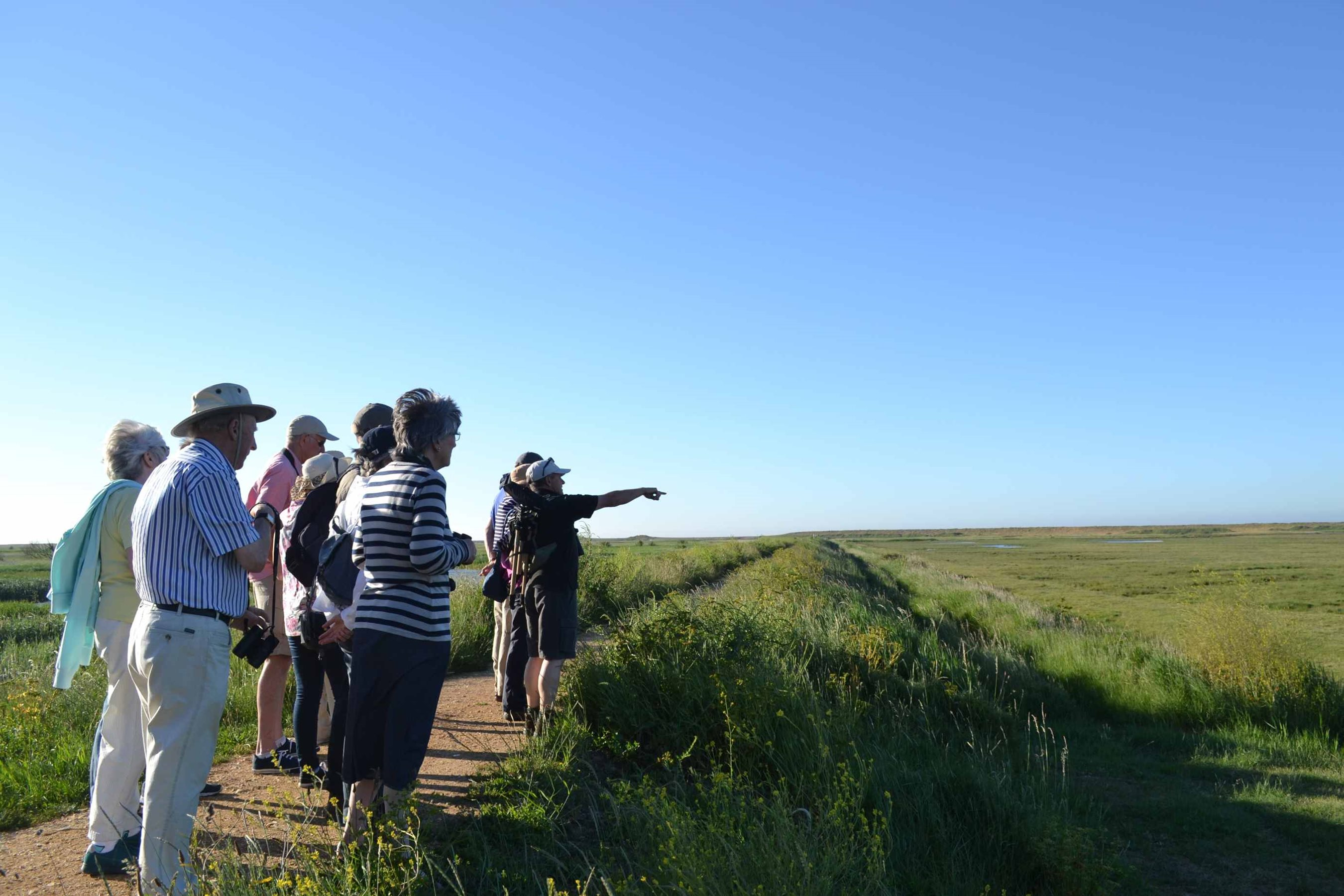 Circuit of Cley, NWT Cley Marshes NR25 7SA | A guided circuit walk around the reserve  | Walking, guided, wildlife