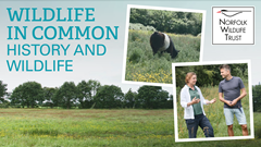 Wildlife in Common: history and wildlife
