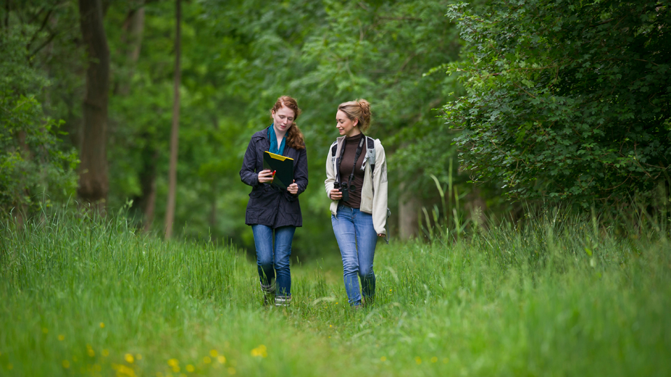 Take a WildWalk around your local landscape and enjoy the wonders of nature, while helping it at the same time.