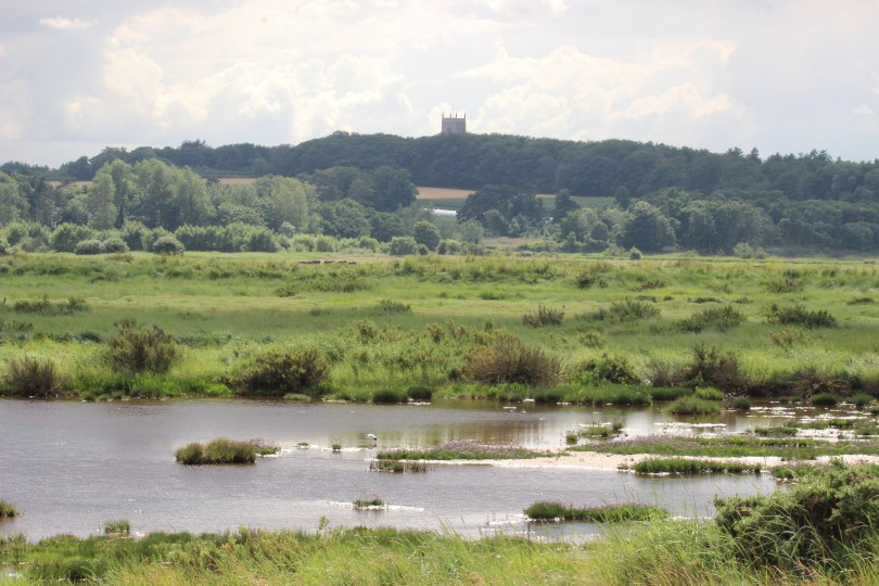 Walk with Women, Norfolk Wildlife Trust Cley Marshes | Join one of our friendly guided walks for women | Birdwatching, wildlife, walking, outdoors