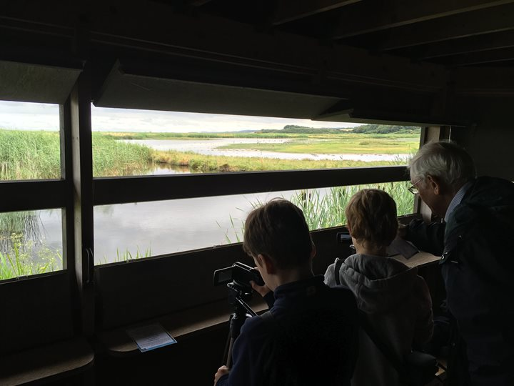 Family Event - Capturing Cley, Norfolk Wildlife Trust Cley Marshes | Explore and film exciting wildlife at Cley using handheld cameras.  | Family, wildlife, cameras