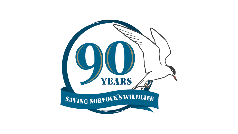 90 years of Norfolk Wildlife Trust