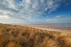 Car parking booking system introduced for NWT Holme Dunes