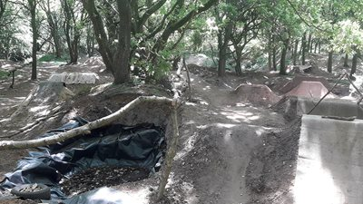 Illegal bike course removed from SSSI