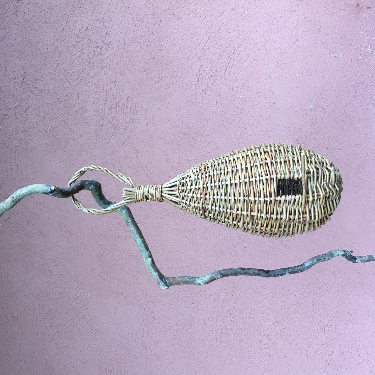 Weave a Willow Bird House, NWT Cley Marshes NR25 7SA | Learn how to weave a hanging willow birdhouse. In this workshop, you will make a small base using a pairing weave | workshop, willow work,