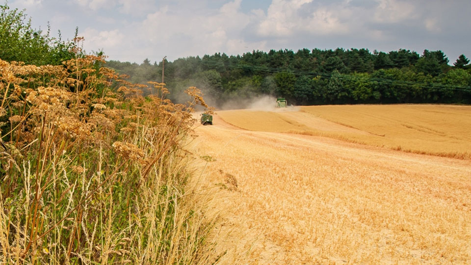 New report shows nature-friendly farmers boost recovery