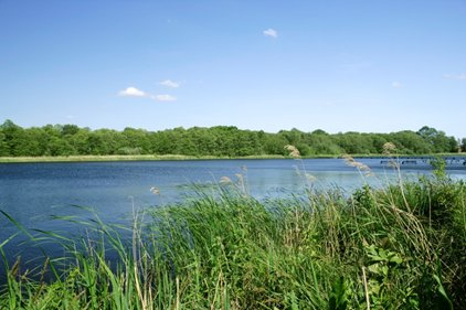 NWT Alderfen Broad, photo by Richard Osbourne
