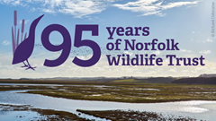 NWT seeking public support for appeal on its 95th anniversary