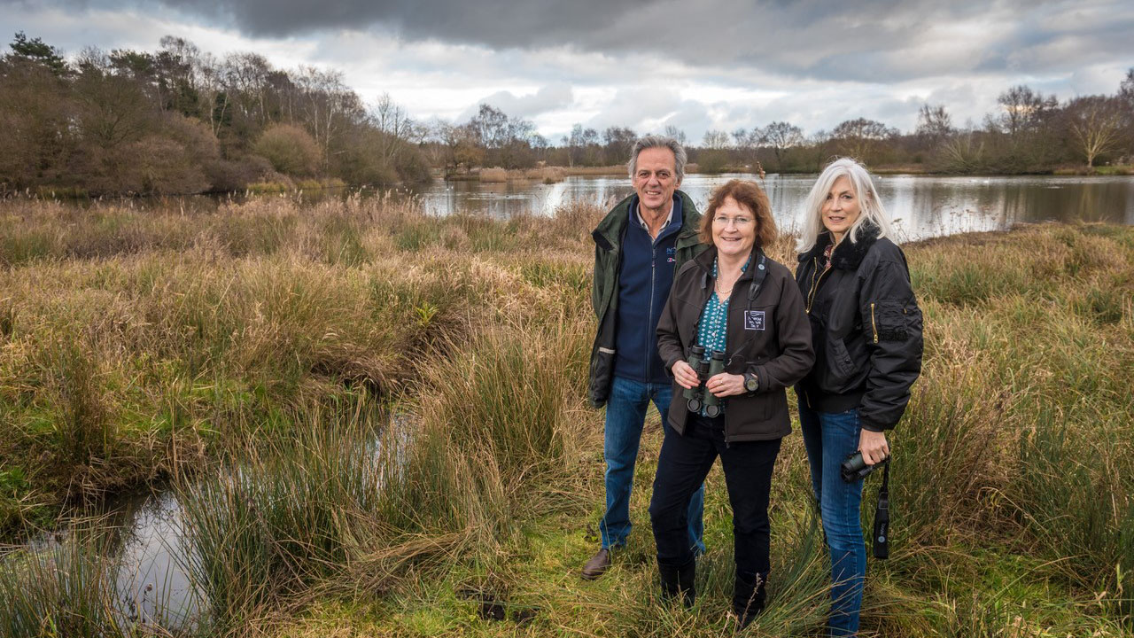 Pensthorpe Bird and Wildlife Fair to raise funds for NWT local wetland habitats